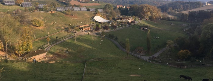 Zotter Choco Tour is one of สถานที่ที่ Szonja ถูกใจ.