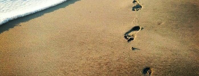 Cassidy Street Beach is one of Locais curtidos por John.