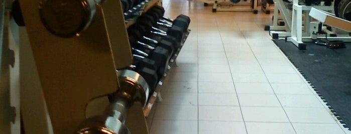 Perfil Gym is one of สถานที่ที่บันทึกไว้ของ Armon.