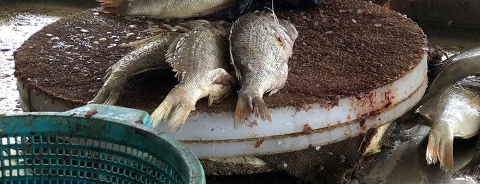سوق السمك المركزي || البنقلة is one of Yanbu.