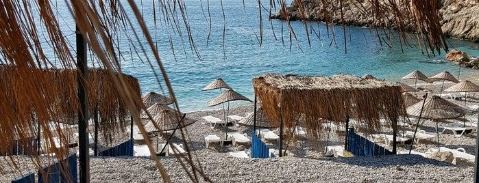 Seyrekcakil Plaji is one of Çadır Kamp Alanı ve Plajlar.