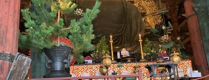Vairocana Buddha (Nara no Daibutsu) is one of Orte, die Shigeo gefallen.