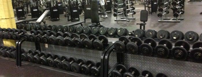 Gold's Gym is one of สถานที่ที่ Matthew ถูกใจ.