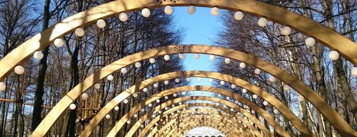 Sokolniki Park is one of Must go in Msc for M&M.