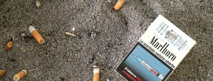 Tabacs is one of Ibrahim 님이 좋아한 장소.