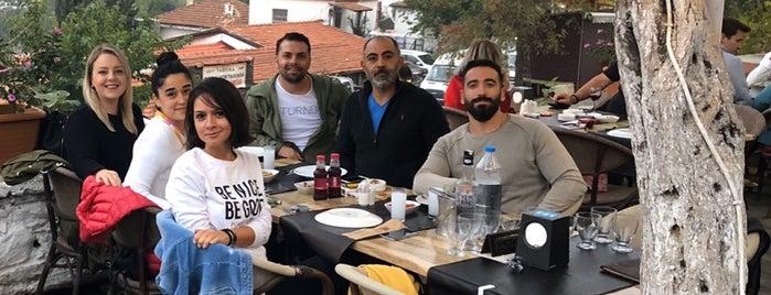 Artemis Restaurant & Şarap Evi is one of Canerさんのお気に入りスポット.
