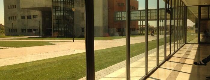 Campus de Alcorcón (URJC) is one of Educ@conTICさんの保存済みスポット.