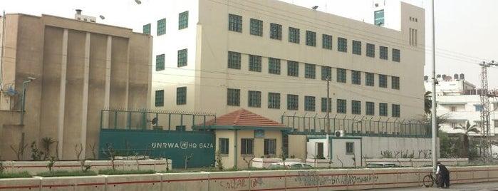 UNRWA Gaza Field Office - Campaign Office in Gaza