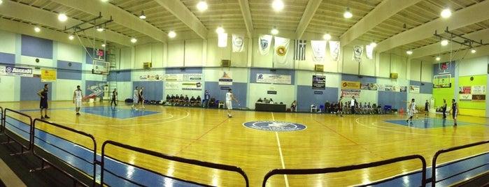 Κλειστό Γήπεδο Μάνδρας is one of Ifigenia: сохраненные места.