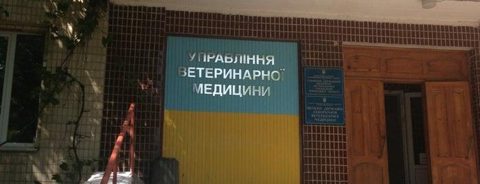 Управління ветеринарної медецини is one of Зоомагазини і ветклініки.