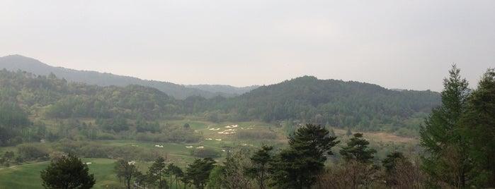 웰리힐리CC is one of EunKyu 님이 좋아한 장소.