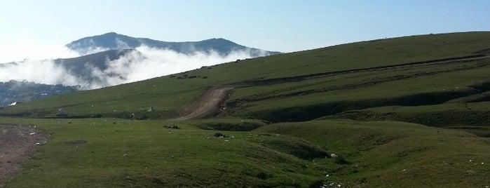 Sis Dağı is one of Karadeniz Yaylaları.