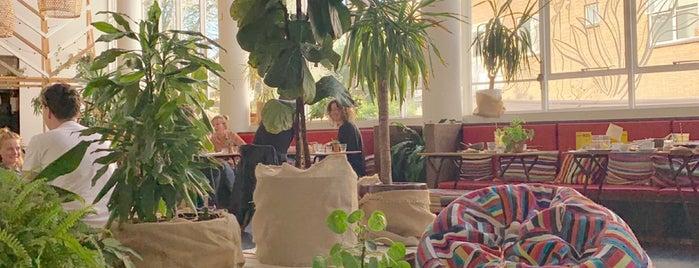 Karibu Café is one of Nederland 🇳🇱.