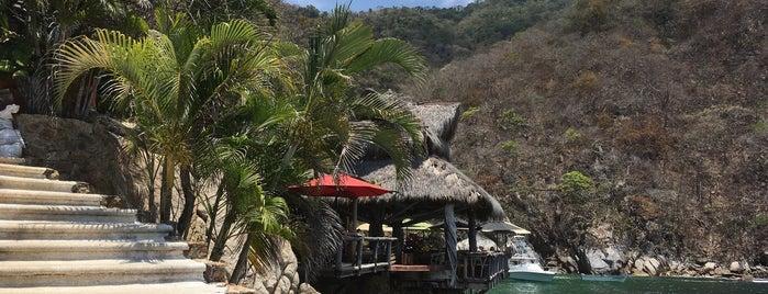 Ocean Grill is one of Vallarta.
