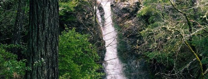 Carson Falls is one of Locais salvos de Paresh.