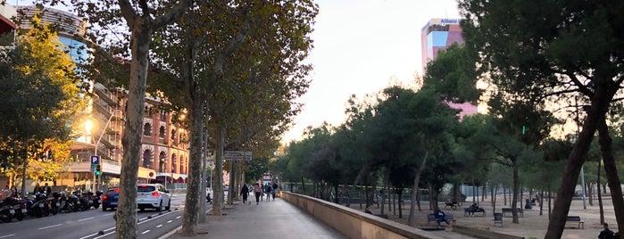 La Nova Esquerra de l'Eixample is one of Locais curtidos por Carlos.