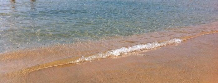 Platja de Sant Pol is one of Playas de España: Cataluña.