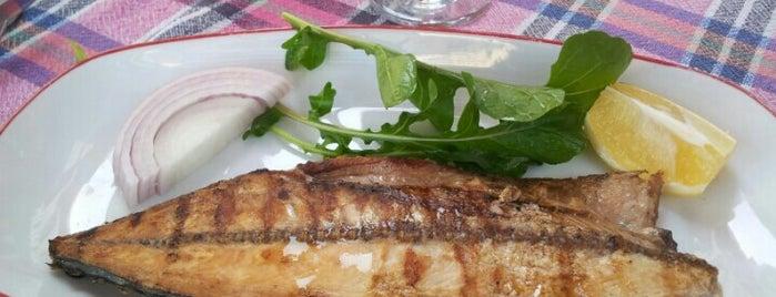 Tirilye Balık Restorant is one of Kuyumcu Mustafa Karagöz.