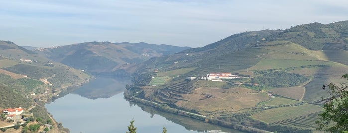 Quinta do Crasto is one of Roberto'nun Beğendiği Mekanlar.