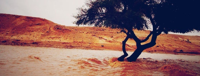 Altouqi is one of Riyadh Outdoors.
