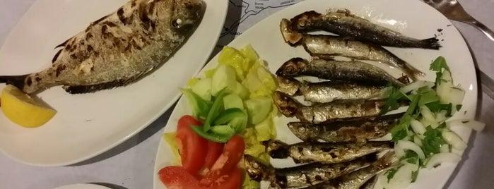 Anemos Restaurant is one of Tempat yang Disukai Coya.