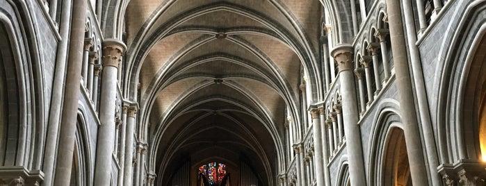 Cathédrale Notre-Dame de Lausanne is one of Orte, die Nes gefallen.