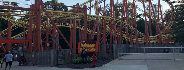 The Mind Eraser is one of ROLLER COASTERS.