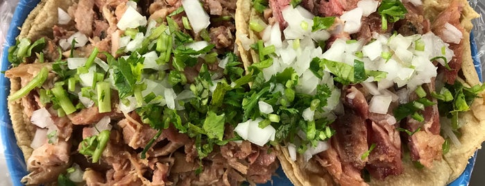 Carnitas Paty is one of TAQUERIA.