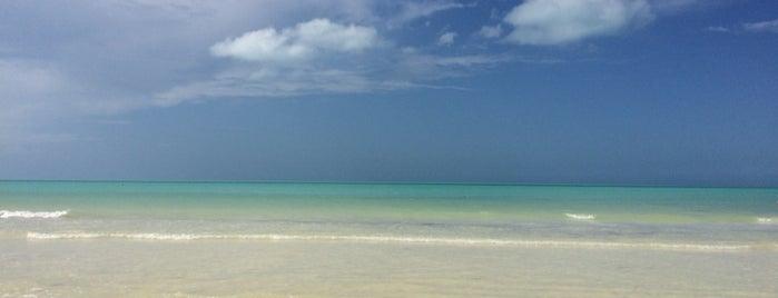 Playa Holbox is one of Locais curtidos por Ross.