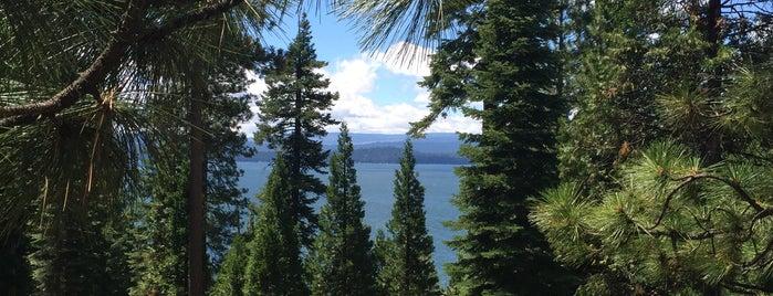 Lake Almanor Rest Area is one of E : понравившиеся места.