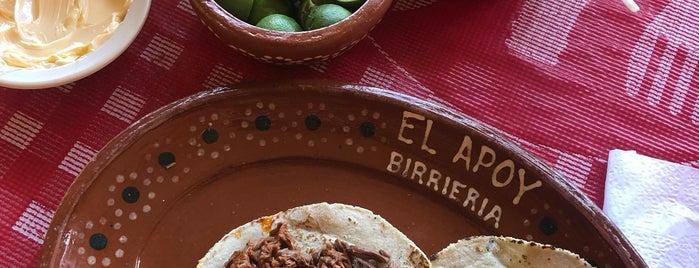 Birrieria El Apoy is one of Locais curtidos por Gaston.