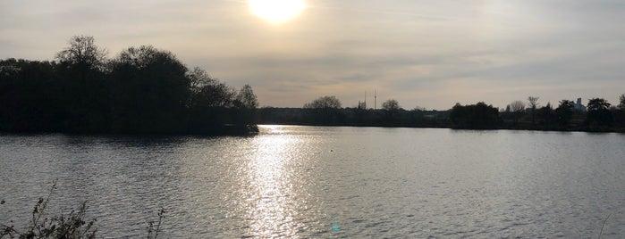Walthamstow Wetlands is one of Orte, die Emilie gefallen.