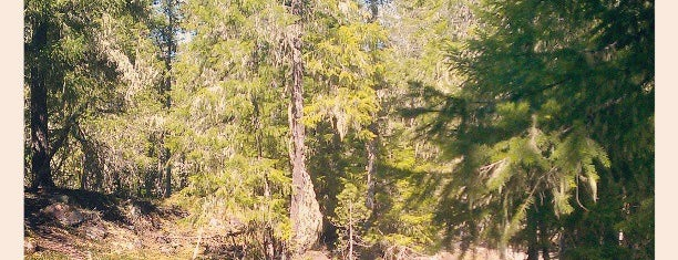 Ramona Falls Trailhead is one of Portlandia.