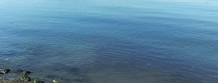 Neptune Beach is one of MNZ 님이 좋아한 장소.