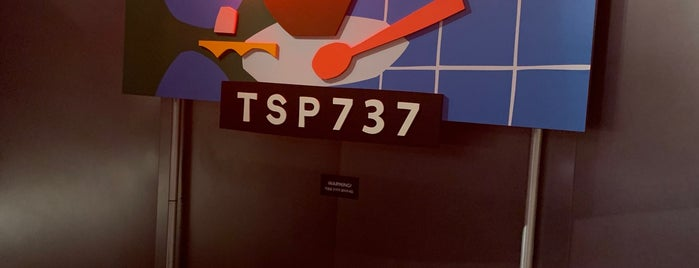 TSP737 is one of Pro2.