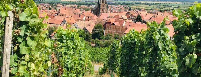 Dambach-la-Ville is one of Best of Alsace.