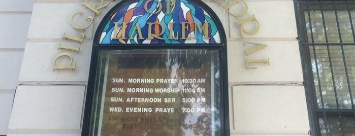 Pilgrim Cathedral of Harlem is one of Posti che sono piaciuti a Erika.