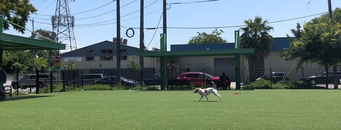 Del Monte Dog Park is one of Tempat yang Disukai Stacy.