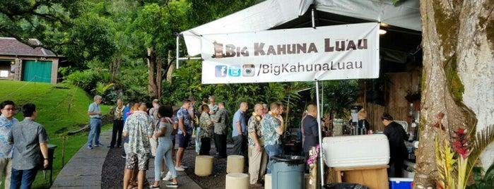 big kahuna luau is one of สถานที่ที่ Y ถูกใจ.