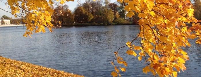 Kirov Central Park / Yelagin Island is one of Санкт-Петербург.