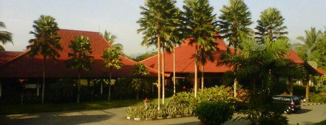 Kalibaru Cottages is one of Java / Indonesien.