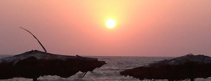 Candolim Beach is one of Travel.