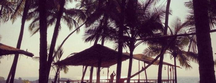 Tempat yang Disukai Vikram
