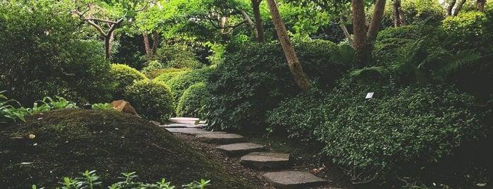 Japonská zahrada is one of Park / plaza / outdoors.