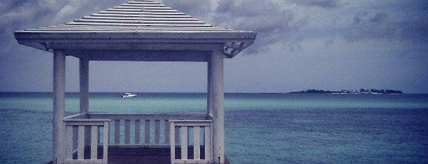 Beach Club Cafe is one of Bahamas Trip.