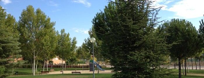 Parque Alejandro de la Sota is one of Parks to enjoy in Boadilla.