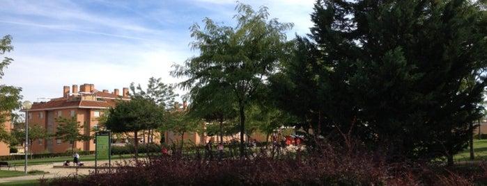 Parks to enjoy in Boadilla