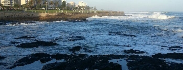 Sea Point Beach Promenade is one of Cape Town List.