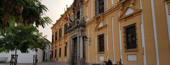 Plaza Cardenal Salazar is one of Córdoba.