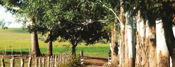 Carrancas - MG is one of Lugares favoritos de Warley.